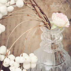 snowberries_feat