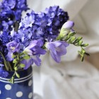 blue freesia from {nifty thrifty things}