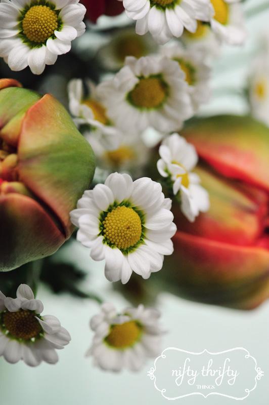 mini chrysanthemum from {nifty thrifty things}